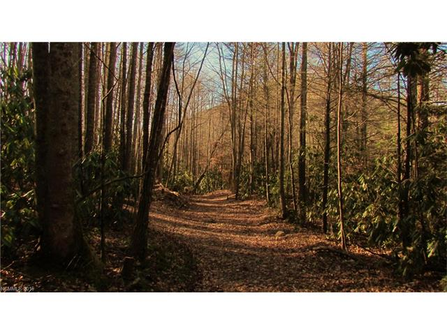 tbd Bee Tree Road 1 Swannanoa, NC 28778